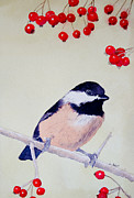Black Berries Painting Framed Prints - Chickadee Framed Print by Laurel Best