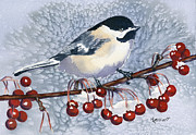 Berries Originals - Chickadee by Marsha Elliott