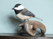 Black-capped Sculptures - Chickadee on Driftwood by Gloria S Schloss