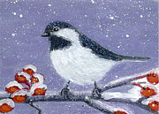 Fran Brooks - Chickadee Winter