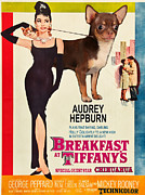 Chihuahua Art Print Prints - Chihuahua Art - Breakfast at Tiffany Movie Poster Print by Sandra Sij