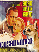 Chihuahua Art Print Prints - Chihuahua Art - Casablanca Movie Poster Print by Sandra Sij