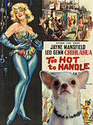 Chihuahua Art Print Prints - Chihuahua Art - Too Hoot to handle Movie Poster Print by Sandra Sij