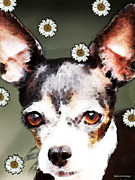 Happy Art Prints - Chihuahua Dog Art - Daisy Day Print by Sharon Cummings