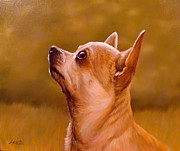 Dog Art Paintings - Chihuahua Portrait by John Silver