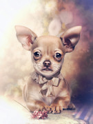 Chihuahua Puppy Print by Cindy Grundsten
