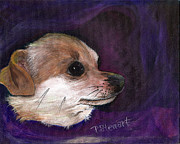 Chiwawa Paintings - Chihuahua Puppy Dog by Penny Stewart