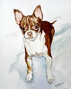 Barking Painting Metal Prints - Chihuahua white chocolate color. Metal Print by Christopher Shellhammer