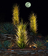 Fancy-full Posters - Chihuly Full Moon Poster by Elaine Snyder