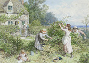 Myles Birket Foster Prints - Children Gathering Blackberries Print by Myles Birket Foster