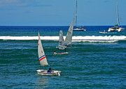 Sailboats In Water Prints - Children Sailing in Lahaina Harbor Print by Kirsten Giving
