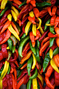 Mexican Fiesta Prints - Chile Ristras Print by Mary Lee Dereske