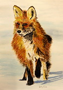 Vixen Paintings - Chilla by Betty-Anne McDonald