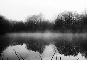 See Fog Photos - Chilly Morning Reflections by Miguel Winterpacht