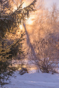 Debra Vronch - Chilly Winter Morning