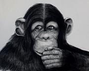 Chimp Print by Jean Cormier