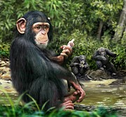 Chimpanzee Digital Art Framed Prints - Chimpanzee Framed Print by Owen Bell