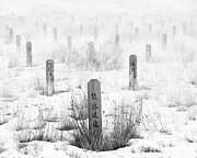 Canadian Prints - Chinese Grave Markers Print by Theresa Tahara