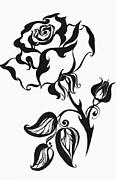 Jenny Rainbow - Chinese Rose