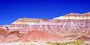 Chinle Prints - Chinle - The Colors Of The Painted Desert Print by Douglas Taylor