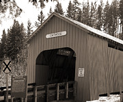 Tim Moore Prints - Chitwood Covered Bridge Print by Tim Moore