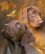 Canine Mixed Media Framed Prints - Chocolate Lab Framed Print by Carol Cavalaris