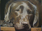 Irina Cumberland - Chocolate lab