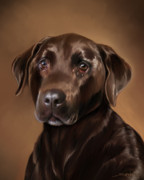 Chocolate Lab Digital Art Posters - Chocolate Lab Poster by Michael Spano