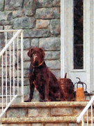 Lab Framed Prints - Chocolate Labrador on Porch Framed Print by Susan Savad