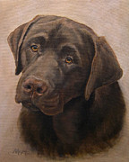 Retrievers Paintings - Chocolate Labrador Retriever Portrait by Amy Reges