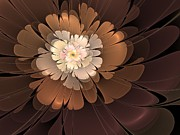 Svetlana Nikolova - Chocolate lilly