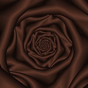 Chocolate Rose Spiral Print by Colin  Forrest