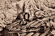 Helen Akerstrom Photography - Chocolate Sepia Blades...