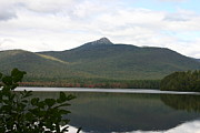 Mt Chocorua Posters - Chocorua Reflections Poster by Denyse Duhaime