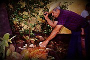 Jsm Fine Arts Halifax Prints - Chopping Coconuts in Cuba Print by John Malone
