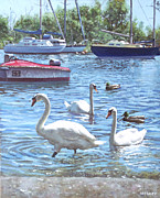 Boats In Water Painting Posters - Christchurch Harbour Swans And Boats Poster by Martin Davey
