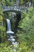 Pierce County Posters - Christine Falls at Mt. Ranier Poster by Sandra Bronstein