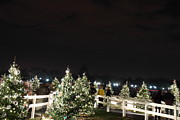 Silhouettes Photo Acrylic Prints - Christmas at the Ellipse - Washington DC - 01136 Acrylic Print by DC Photographer