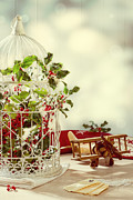 Birdcage Photos - Christmas Birdcage by Christopher and Amanda Elwell