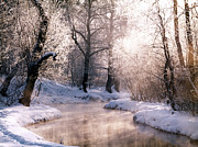 Frozen River Prints - Christmas Card Print by Anonymous