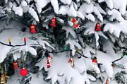 Hang Prints - Christmas decorations in snow Print by Elena Elisseeva