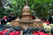 Christmas Display - Us Botanic Garden - 011348 Print by DC Photographer