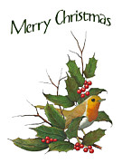 Joyce Geleynse - Christmas English Robin...