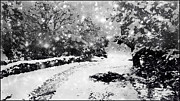 Christmas Eve Painting Posters - Christmas Eve Snow Poster by Douglas MooreZart
