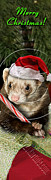 Ferret Digital Art - Christmas Ferret # 393 by Jeanette K