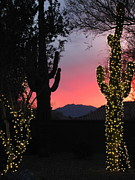 Holiday Cacti Posters - Christmas In Arizona Poster by Marilyn Smith