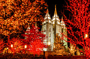 Mormon Temple Photo Acrylic Prints - Christmas in Red Acrylic Print by La Rae  Roberts