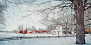 New England Landscapes Digital Art Framed Prints - Christmas Morning Framed Print by Michael Petrizzo