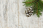 Pine Cones Art - Christmas ornament on pine branch by Elena Elisseeva