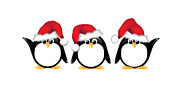Christmas Greeting Posters - Christmas penguins isolated Poster by Jane Rix